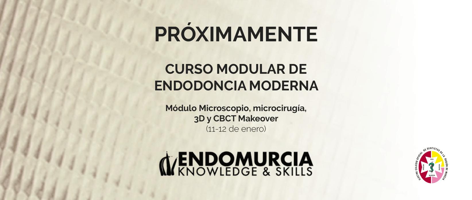 Curso modular de endodoncia moderna de EndoMurcia